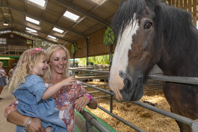 Events include Willows Activity Farm's Summer Spectacular