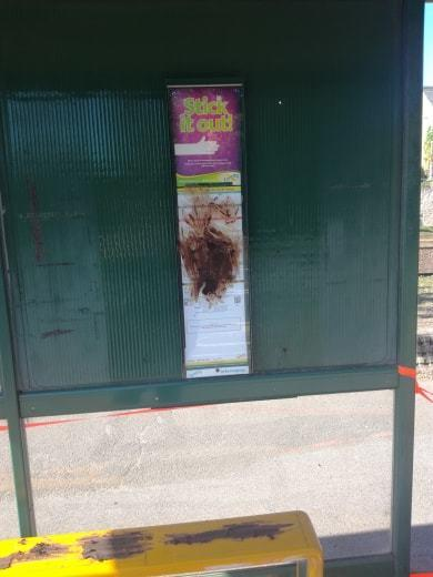 Poo was smeared at The Cross bus stop (Photo credit Sam Lambert)