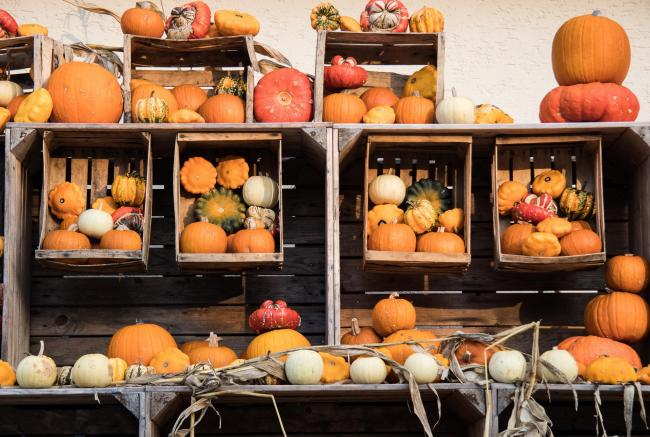 Events this weekend include an autumn market in Abbots Langley