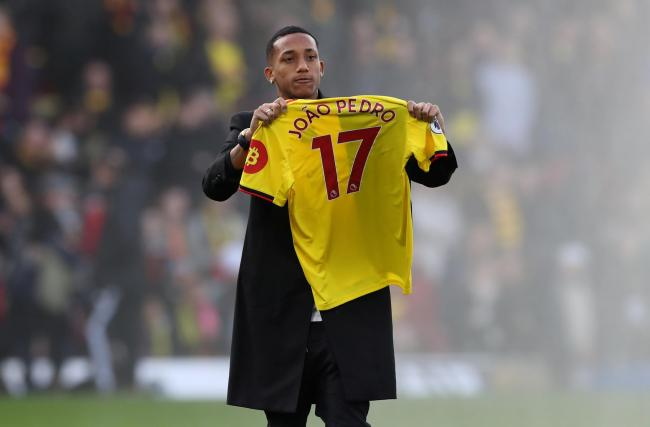 Image result for Joao Pedro (Watford)
