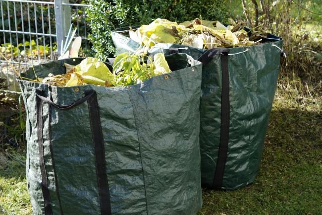 Linden Sharpe says that not everyone will be able to pay for green waste collection