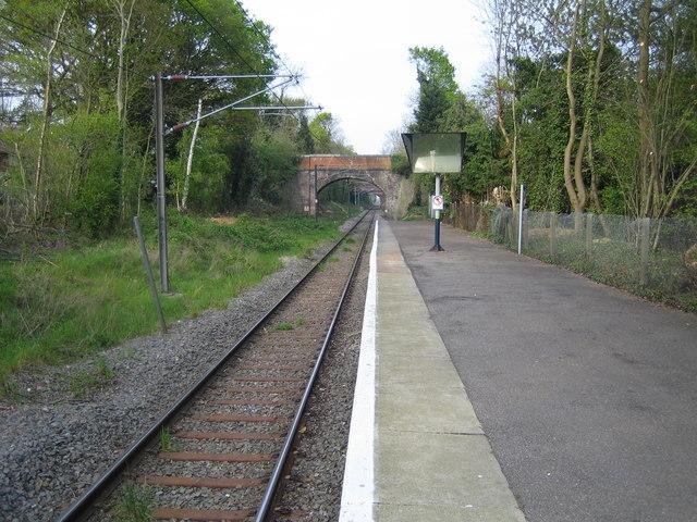 The Abbey Line at Bricket Wood. Credit: Nigel Cox