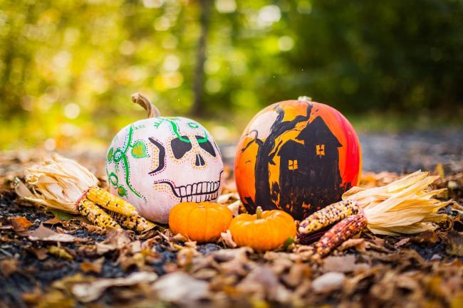 You can paint or decorate your pumpkin