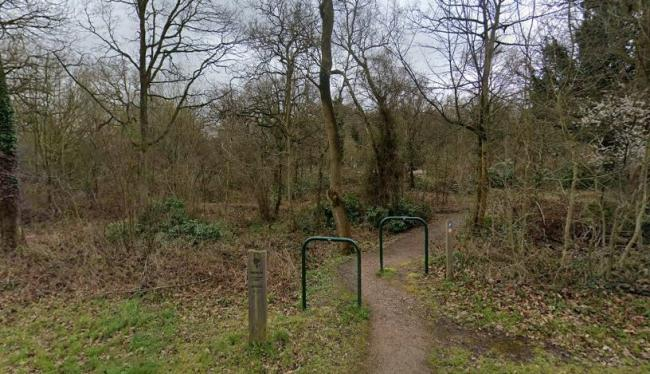 Police say a man indecently exposed himself in Oxhey Woods. Credit: Google Street View