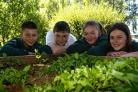Students at Bushey Meads School have created their own vegetable garden