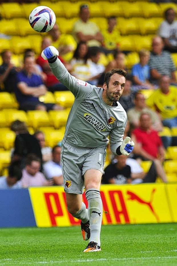 Watford keeper Manuel Almunia is feeling settled at the club: Simon Jacobs