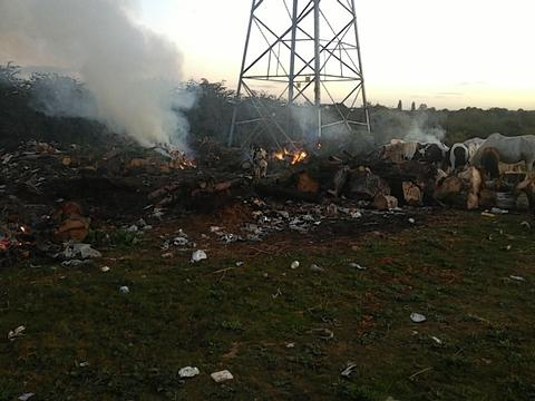 Fly-tippers leave waste burning in field