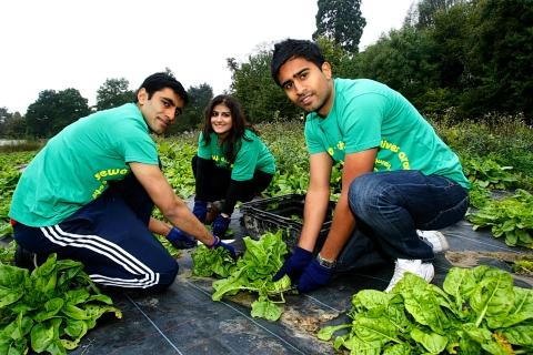 Students help make Seva Day a selfless success