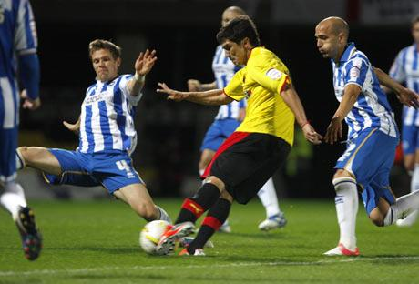 Watford Observer: Fernando Forestieri. Picture: Holly Cant