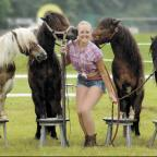 Horse and pony displays at Willows Farm Village