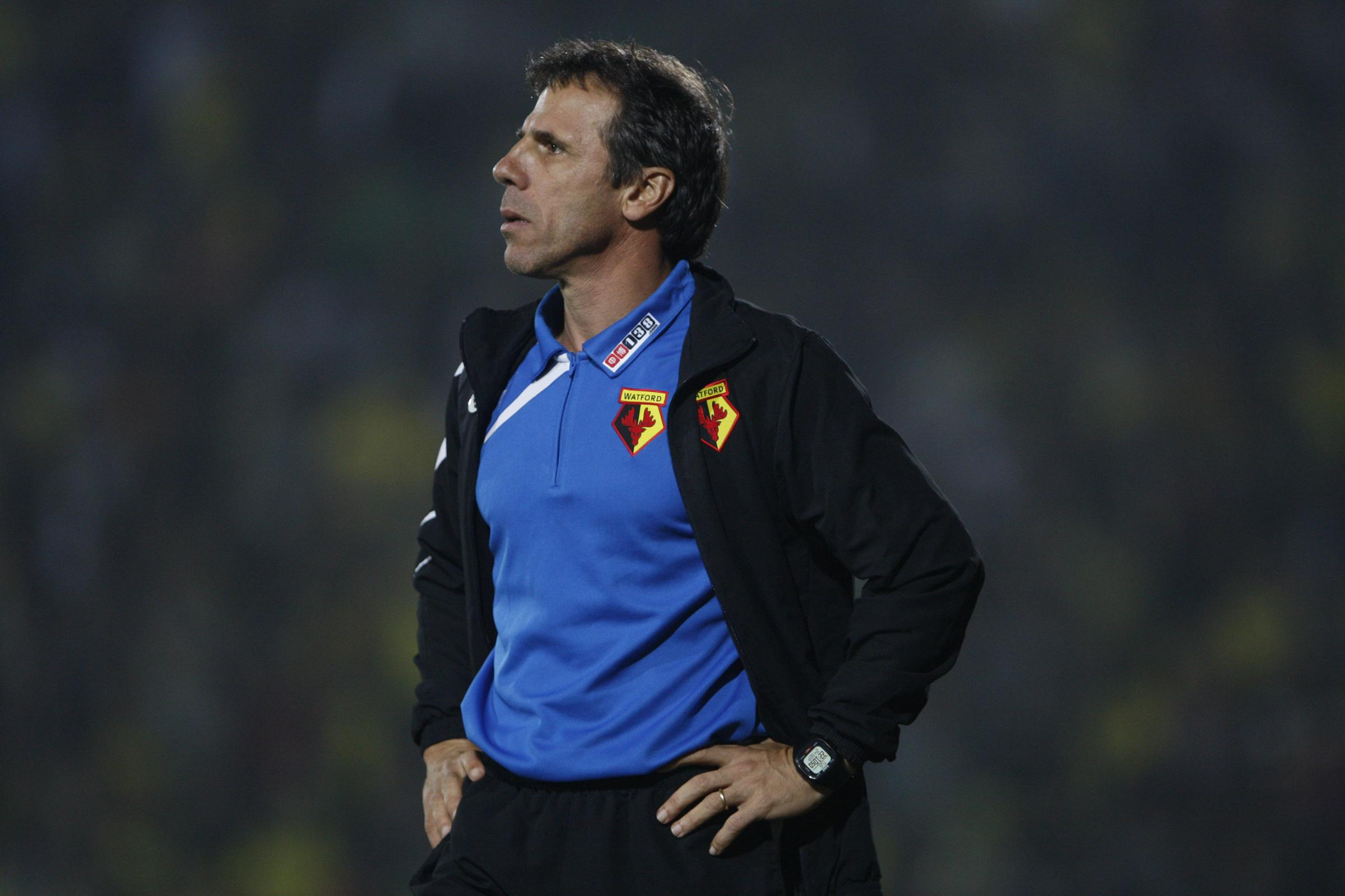 Watford Observer: Hornets boss Gianfranco Zola Picture: Holly Cant