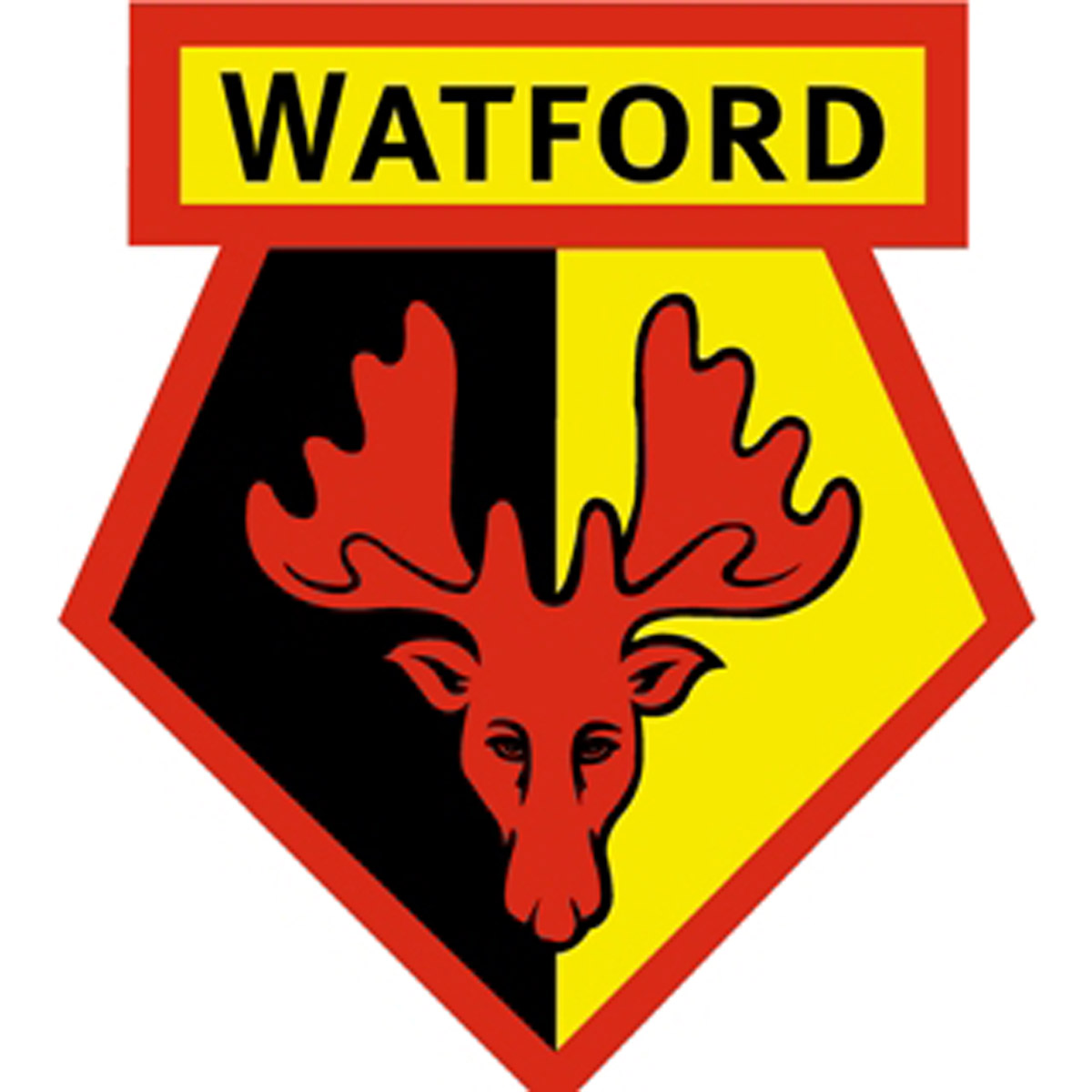 Watford players and management row
