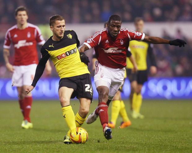 Almen Abdi shortly before his latest injury set-back. Picture: Action Images