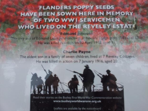 Poppy seeds sown to commemorate Bushey soldiers
