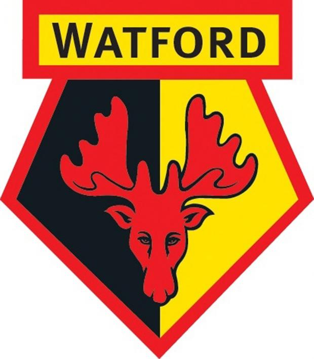 Watford Observer: Watford Under-18s announce Kings Langley friendly