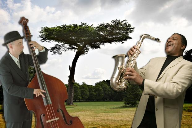 Cassiobury Park to be jazzed-