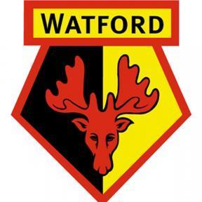Watford Mailing List celebrates 20th birthday