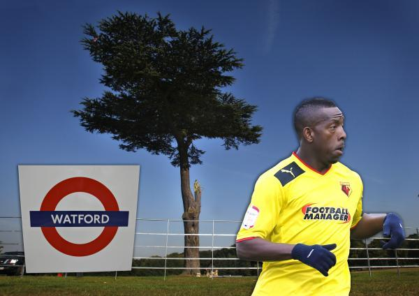 We asked what the best thing about Watford was, and the results were...surprising