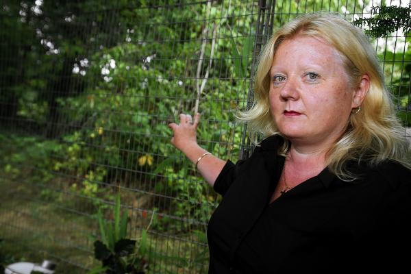 Croxley Green woman calling on Transport For London to let her to turn disused land into a vegetable patch