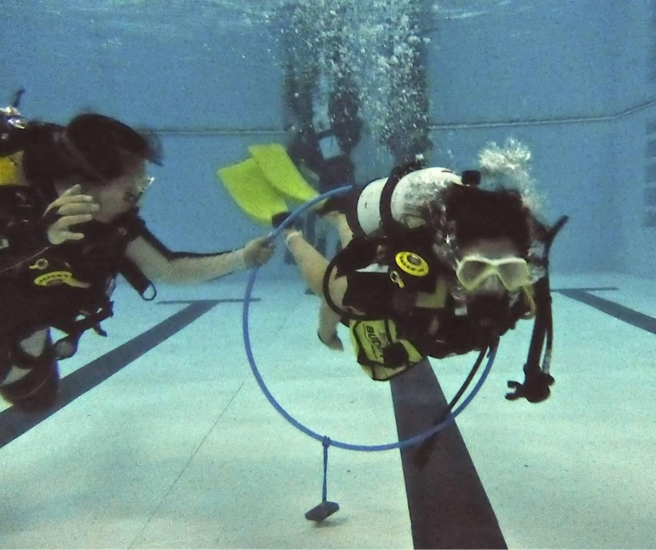 What is diving - description, features, equipment, necessary skills and interesting facts 17