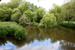 Relax in Watford's parks this summer