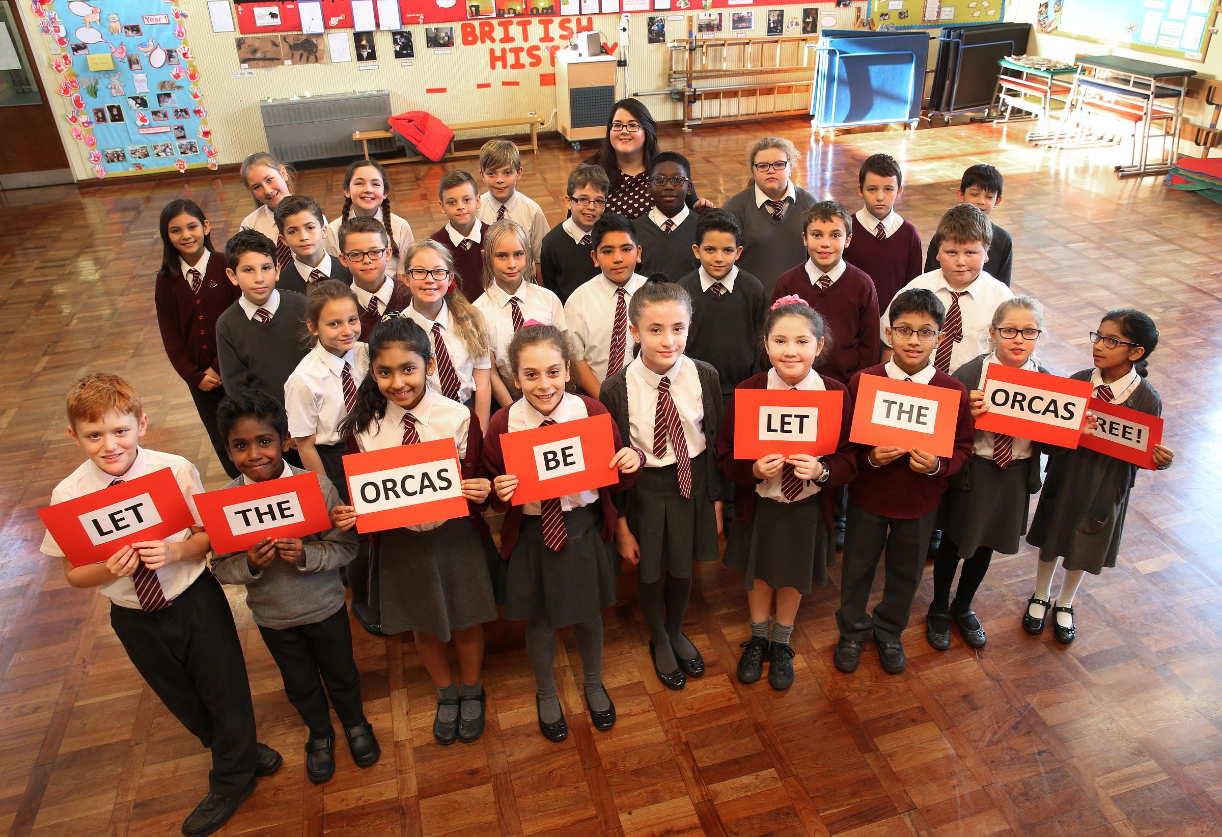 Year 6 pupils at Bushey Heath Primary set up petition to stop orca captivity