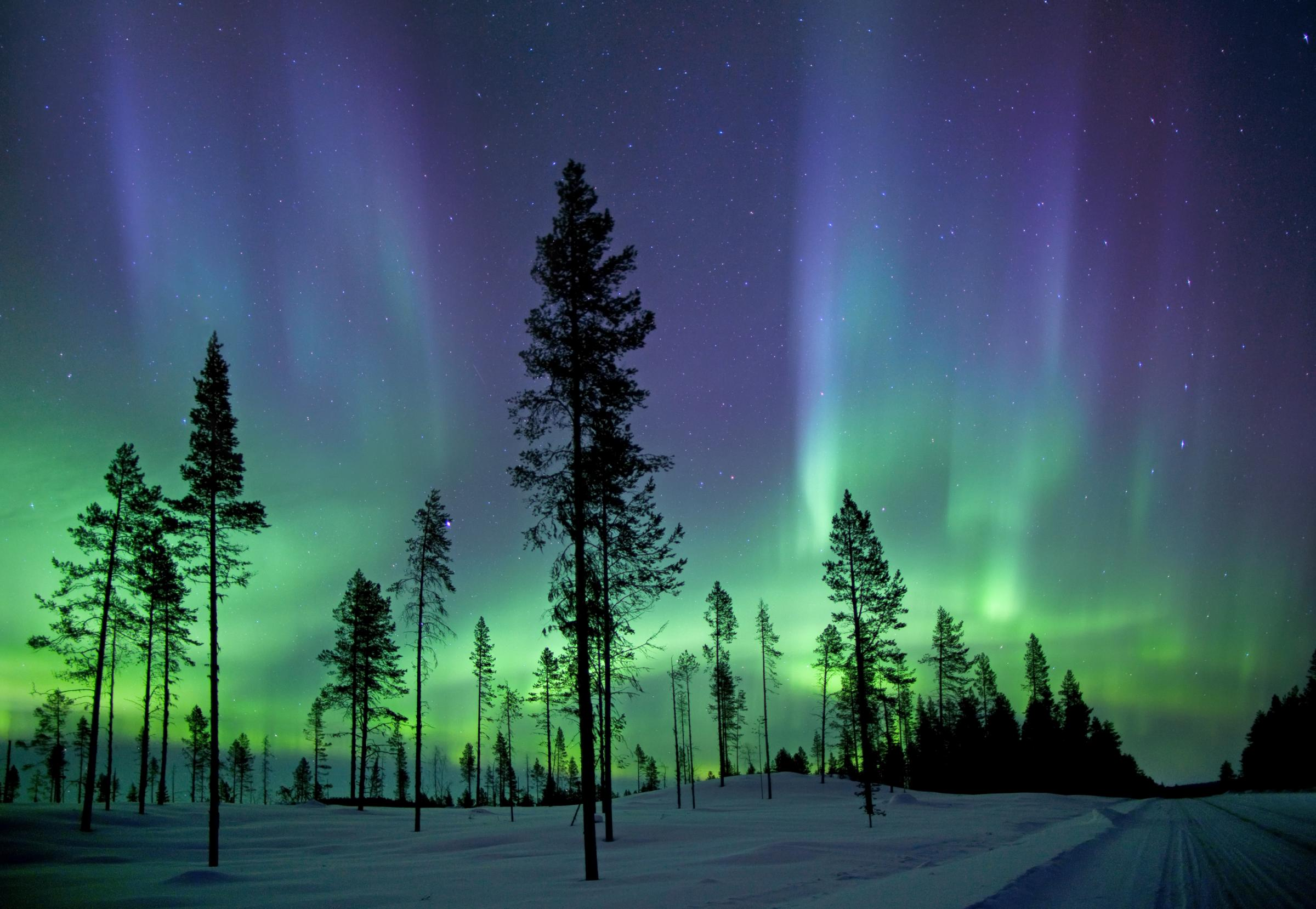 The northern lights are most commonly seen beyond the arctic circle