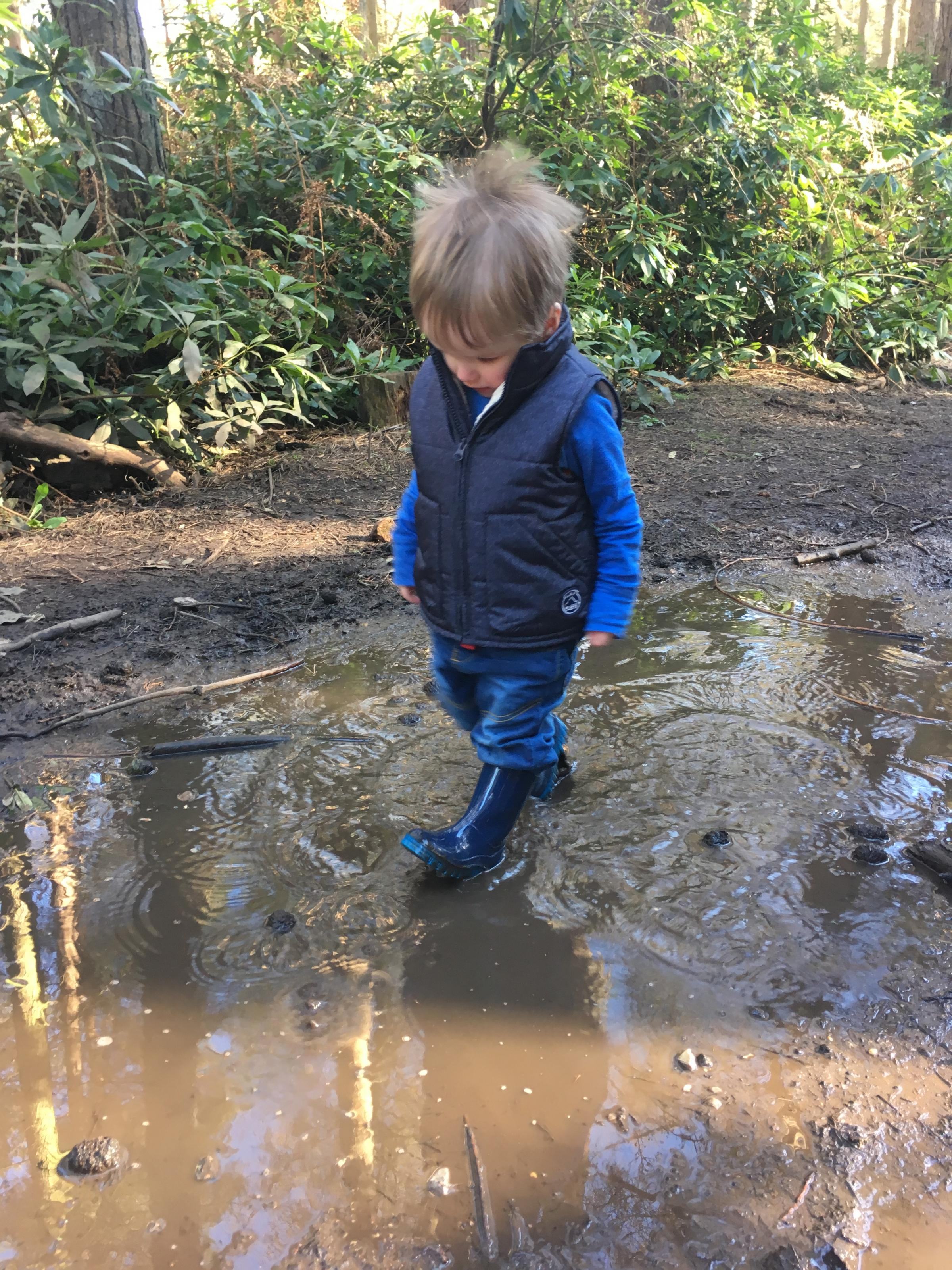 Parent and Toddler Forest School