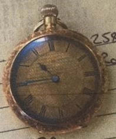 Officers investigating a burglary in Watford have released an image of a distinctive watch that was stolen.