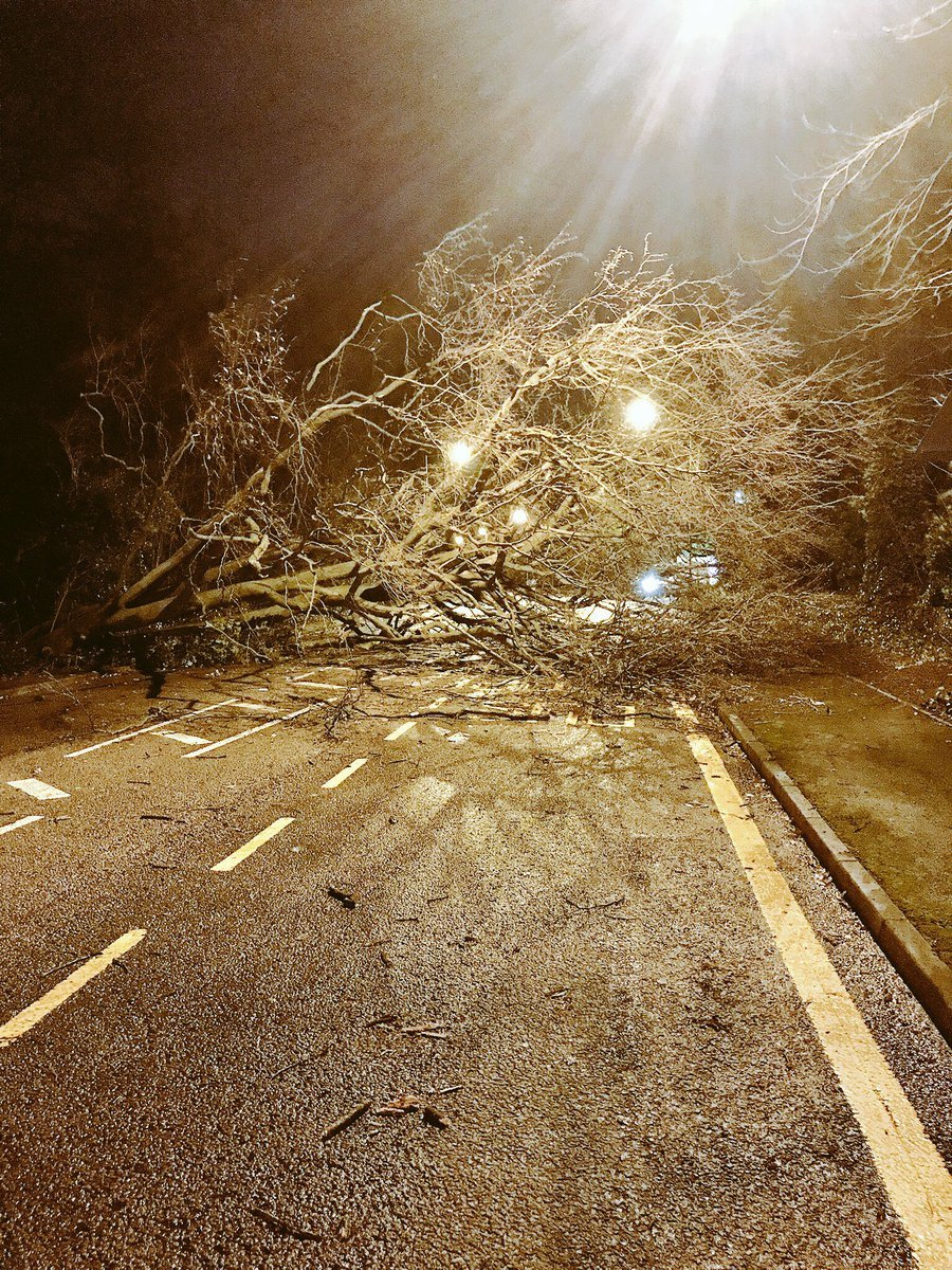 A fallen tree blocked the whole of Common Road, Stanmore (Photo: @MPSHarrow)