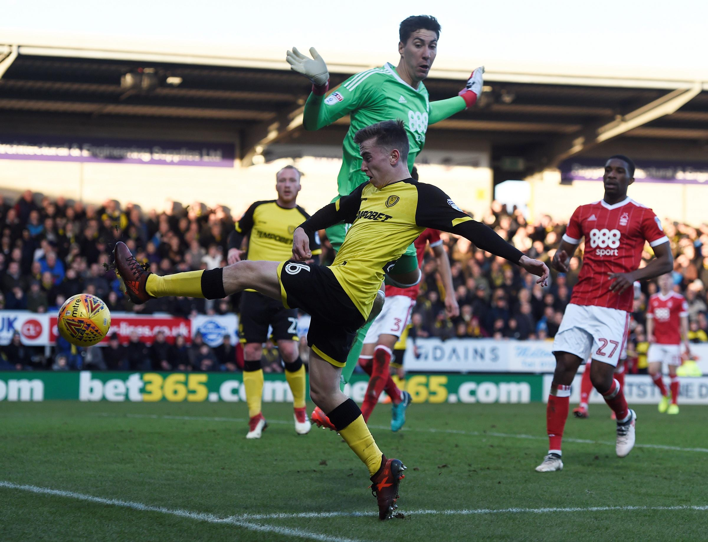 Costel Pantilimon was one of Watford's on loan players to be in action. Picture: Action Images