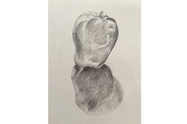 Adult Art Short Course: Beginners' Drawing