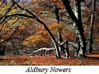 Aldbury Nowers