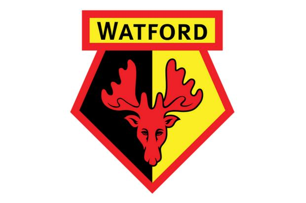 Watford United's best goals in the Premier League
