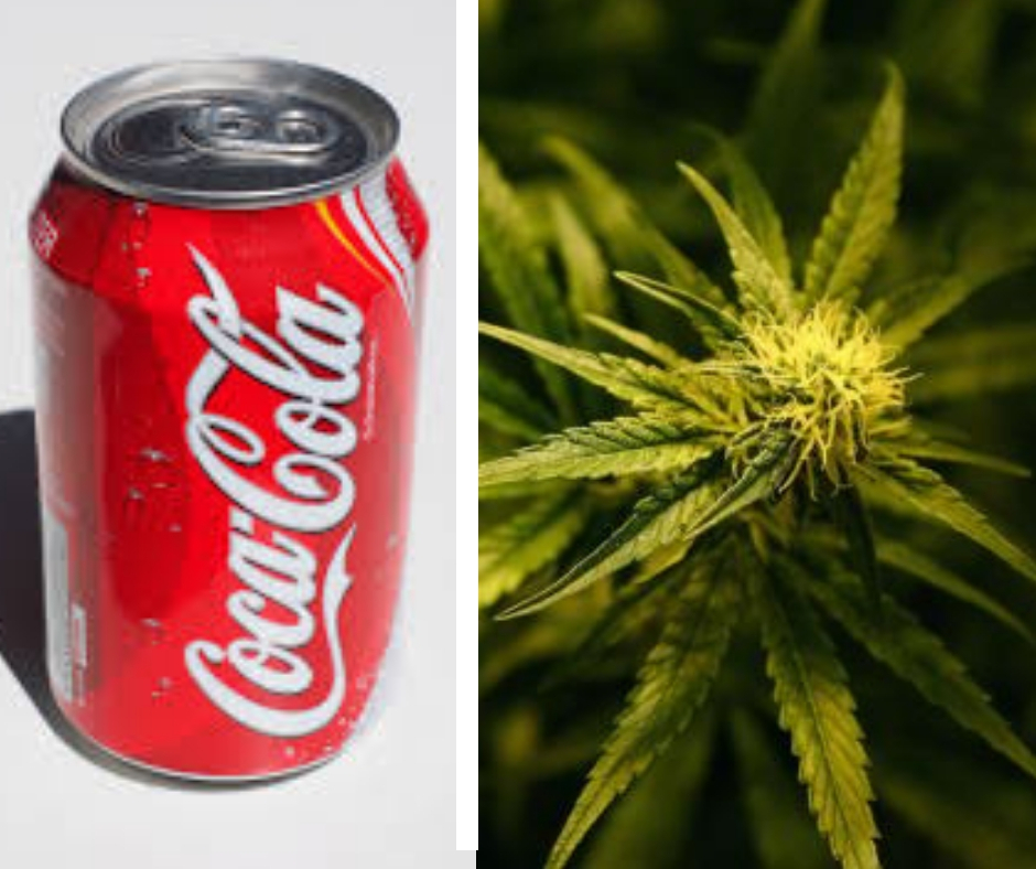 Coca-Cola looking to enter cannabis drink market with a new
