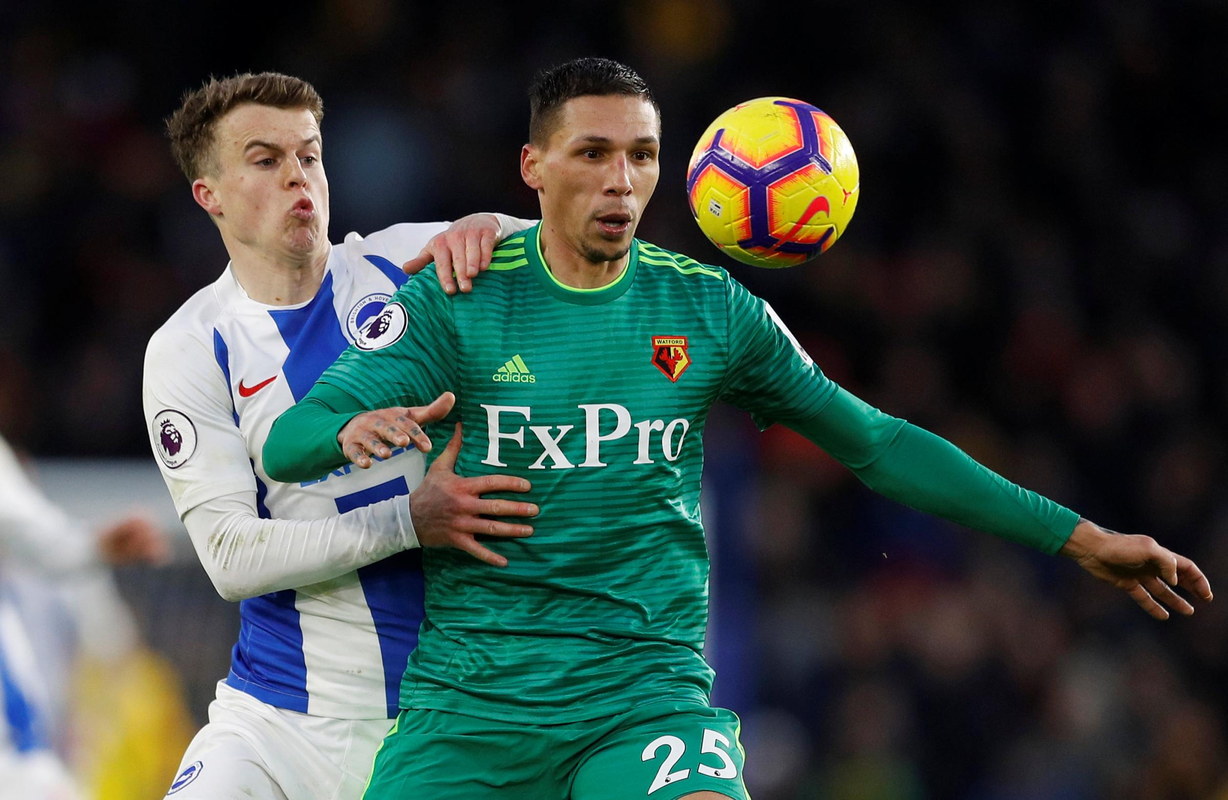 Holebas ban provides opportunities for others
